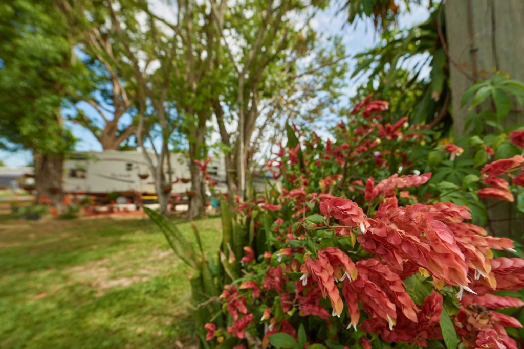 Miami Everglades RV Campground
